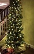 The Sarver Christmas Tree